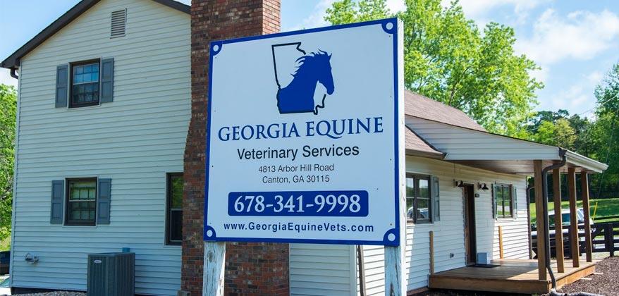 Georgia Equine Vets Practice
